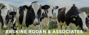 Dairy Industry Labour Agreements: Sponsoring Skilled Employees to work in Australia